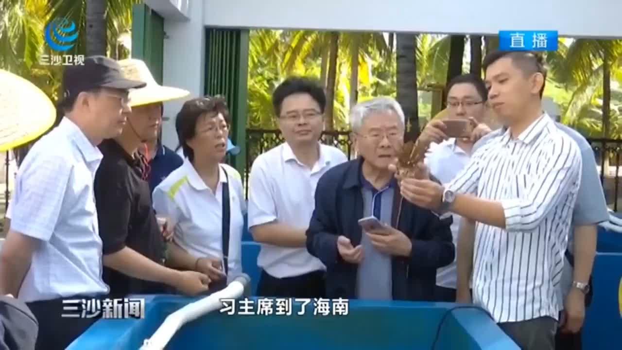 中国工程院院士调研组一行点赞三亚珊瑚礁生态保护