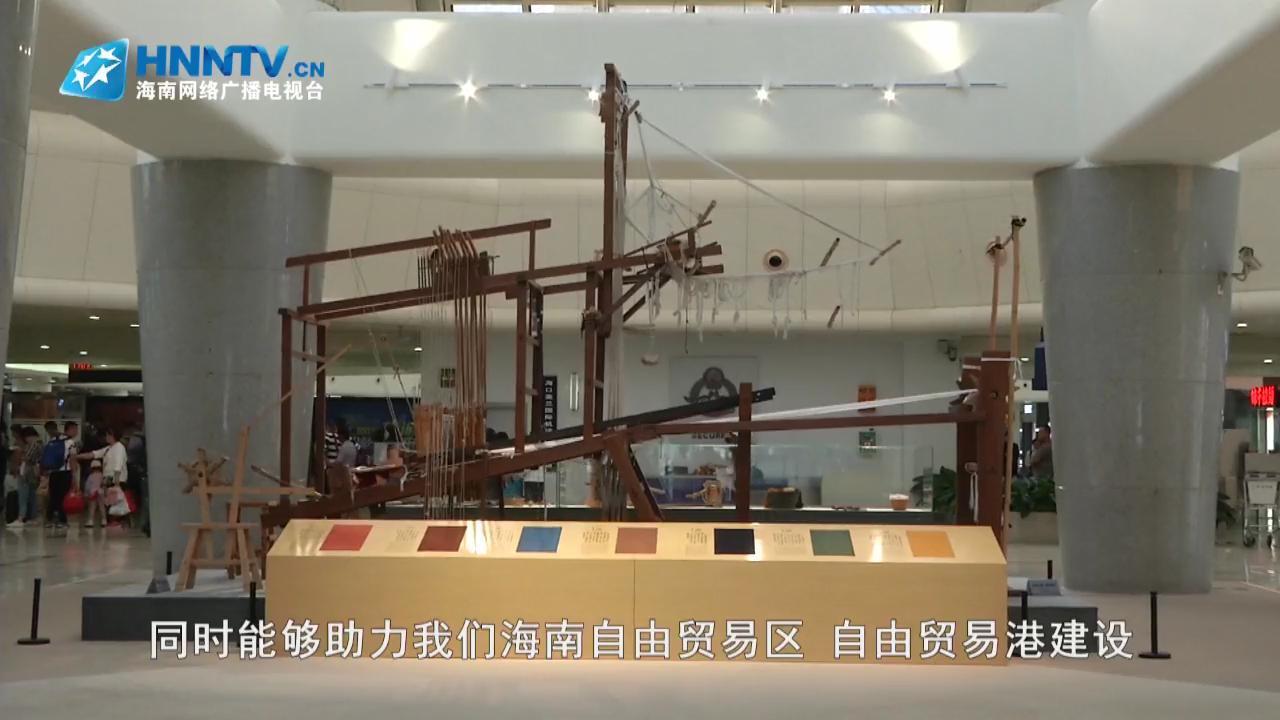 """微视频:海南省博物馆""""活化石""""进机场"""