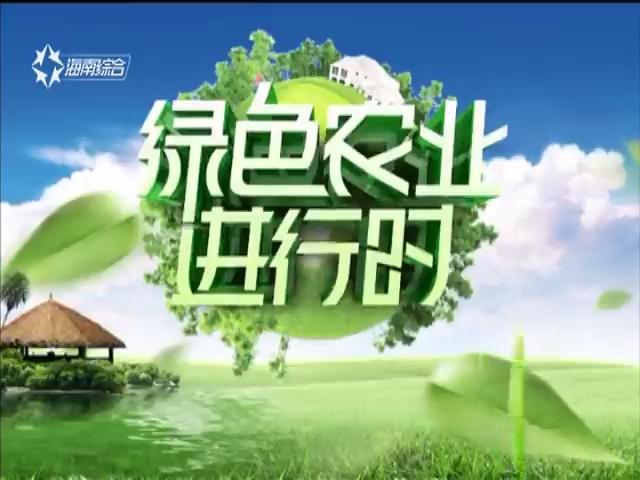 《绿色农业进行时》2019-01-20
