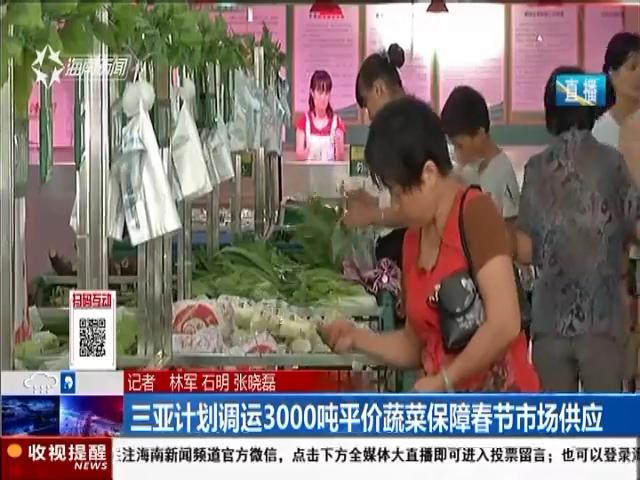 三亚计划调运3000吨平价蔬菜保障春节市场供应