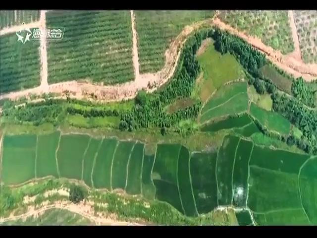《绿色农业进行时》2019-02-19