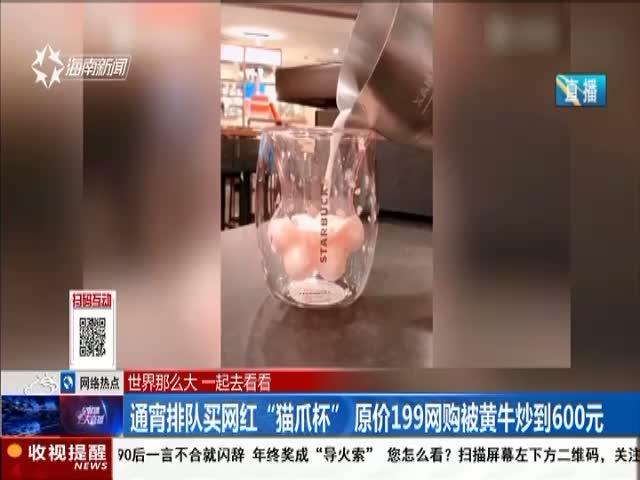 """通宵排队买网红""""猫爪杯""""原价199网购被黄牛炒到600元"""