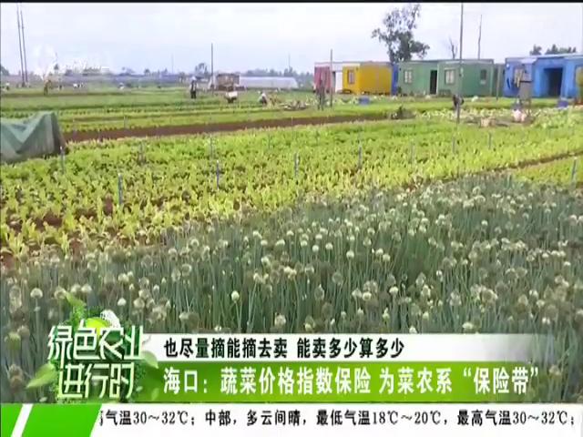 《绿色农业进行时》2019年03月01日