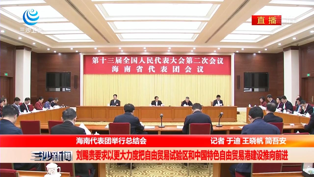 海南代表团举行总结会 刘赐贵要求以更大力度把自由贸易试验区和中国特色自由贸易港建设推向前进