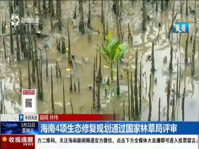 海南4项生态修复规划通过国家林草局评审