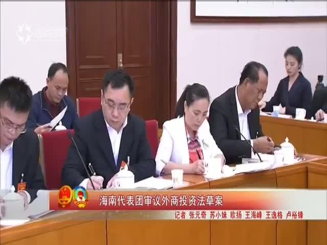 海南代表团审议外商投资法草案