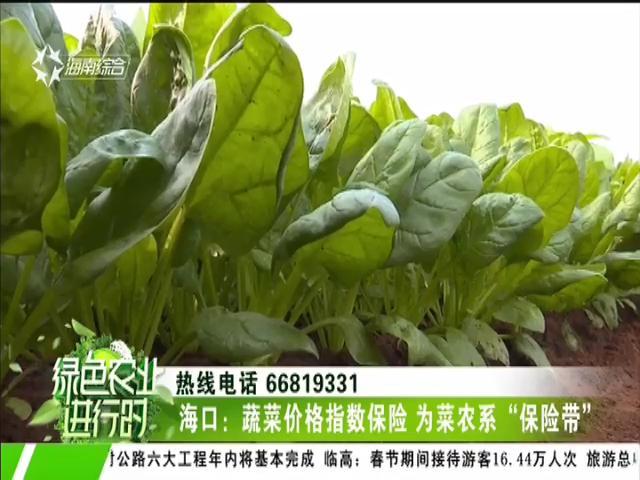"""海口:蔬菜价格指数保险 为菜农系""""保险带"""""""