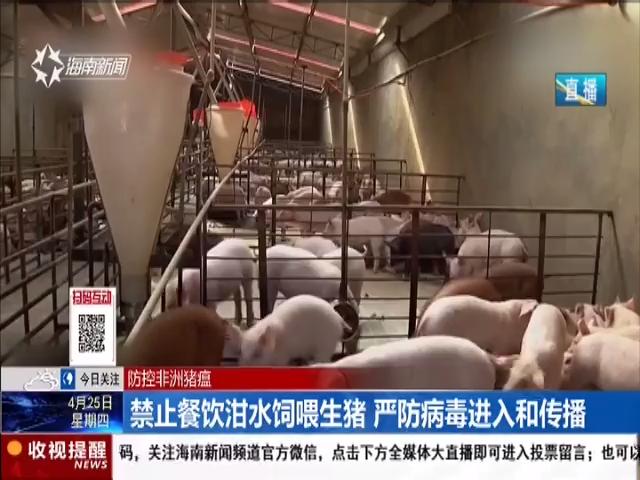 禁止餐飲泔水飼喂生豬 嚴防病毒進入和傳播