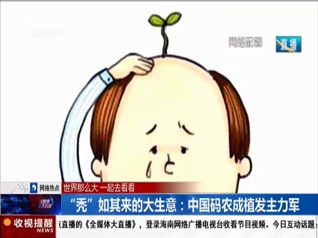 """""""秃""""如其来的大生意:中国码农成植发主力军"""