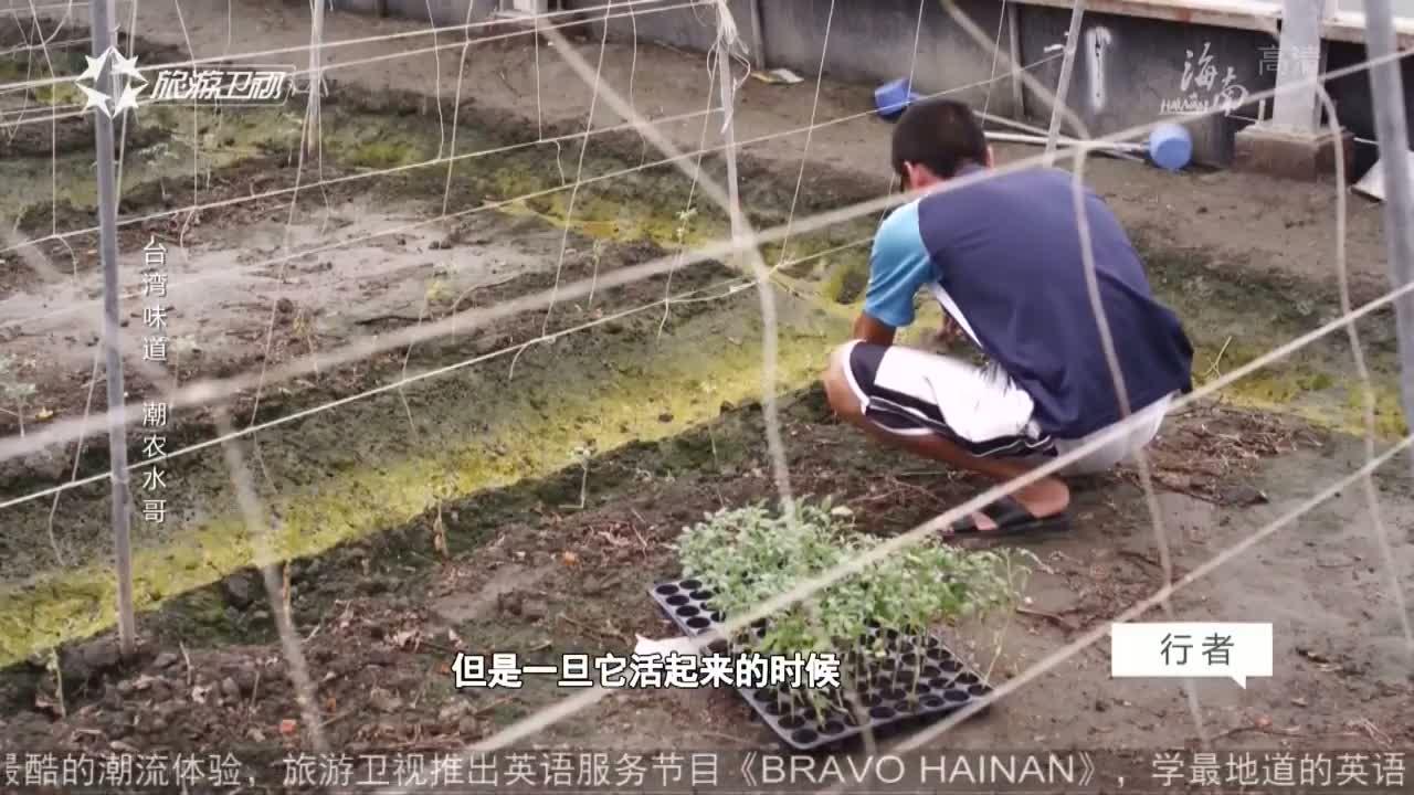行者 臺灣味道 潮農水哥