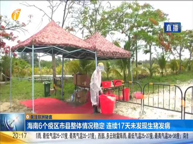 海南6个疫区市县整体情况稳定 连续17天未发现生猪发病