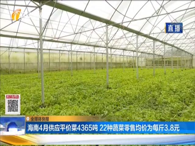 海南4月供应平价菜4365吨 22种蔬菜零售均价为每斤3.8元