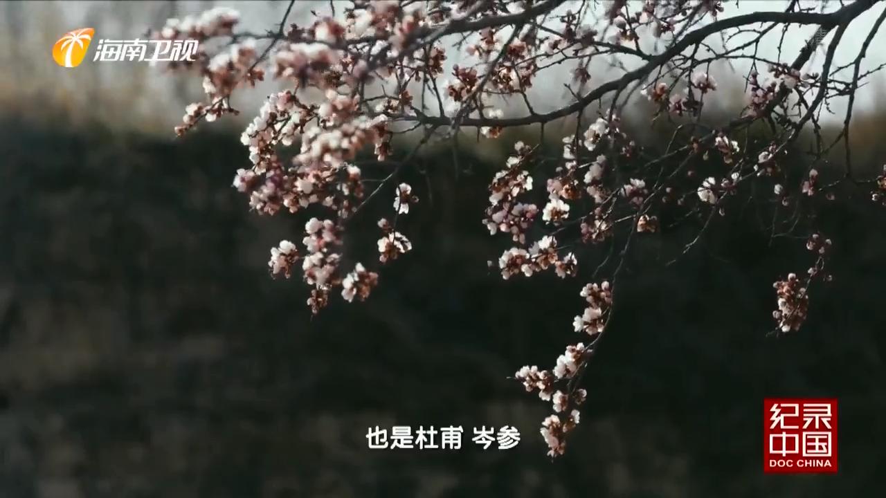 《纪录中国》心灯:故乡是一盏明心灯