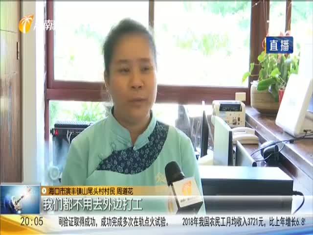 """海口演丰镇 乡村旅游带火民宿产业 村民当上""""小老板"""""""