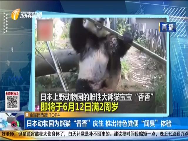 """日本动物园为熊猫""""香香""""庆生 推出特色粪便""""闻臭""""体验"""