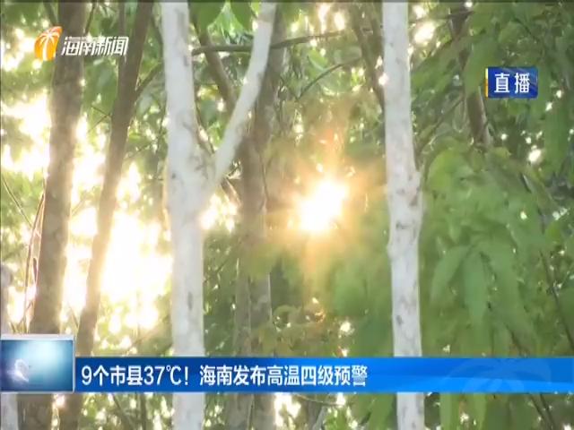 9個市縣37℃!海南發布高溫四級預警