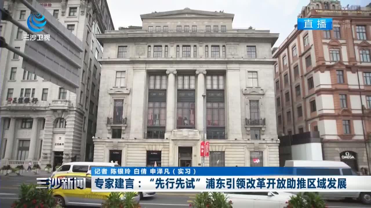 """專家建言:""""先行先試""""浦東引領改革開放助推區域發展"""