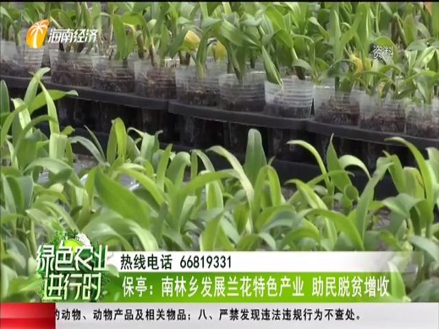 《綠色農業進行時》2019年06月17日