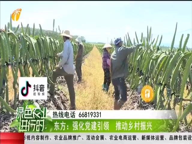 东方:强化党建引领 推动乡村振兴