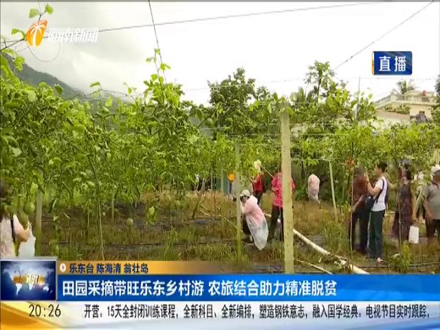 田园采摘带旺乐东乡村游 农旅结合助力精准脱贫