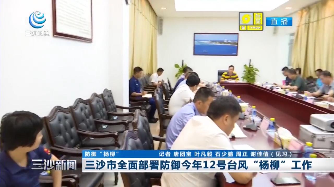 """三沙市全面部署防御今年12號臺風""""楊柳""""工作"""