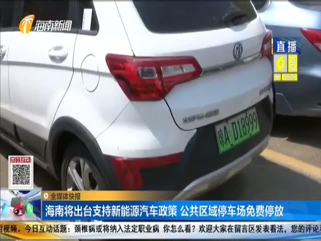 海南将出台支持新能源汽车政策 公共区域停车场免费停放