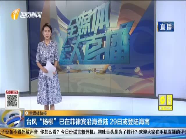 """臺風""""楊柳""""已在菲律賓沿海登陸 29日或登陸海南"""