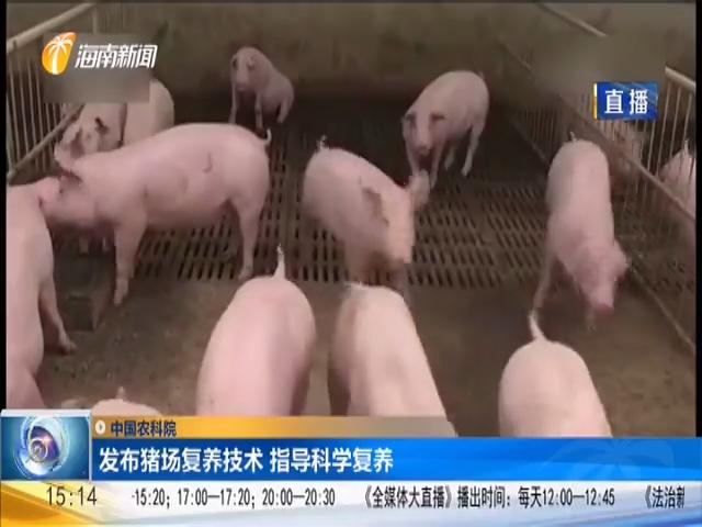 中国农科院:发布猪场复养技术 指导科学复养