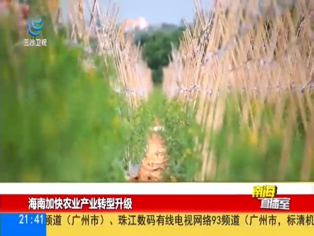 海南加快农业生产转型升级
