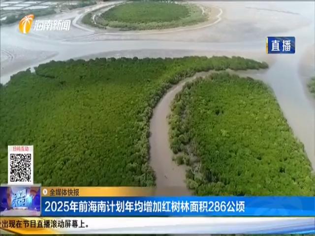 2025年前海南計劃年均增加紅樹林面積286公頃