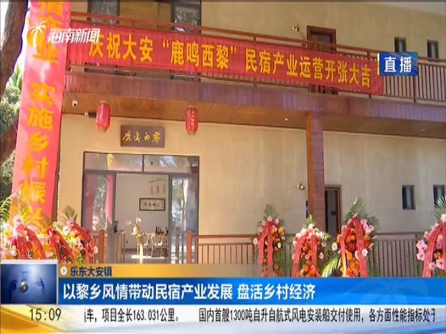 乐东大安镇 以黎乡风情带动民宿产业发展 盘活乡村经济