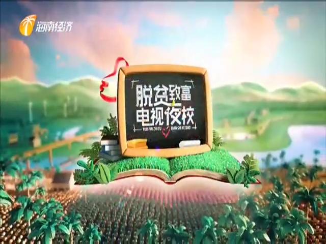 海南省脱贫致富电视夜校第一百六十五课