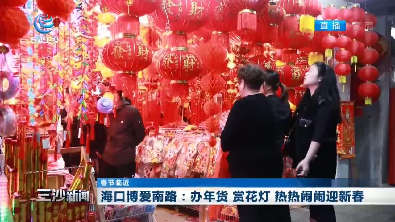 海口博爱南路:办年货 赏花灯 热热闹闹迎新春
