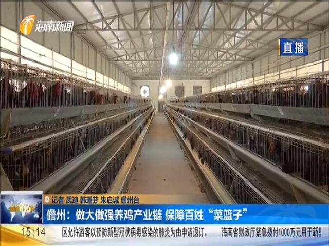 儋州:做大做强养鸡产业链 保障百姓