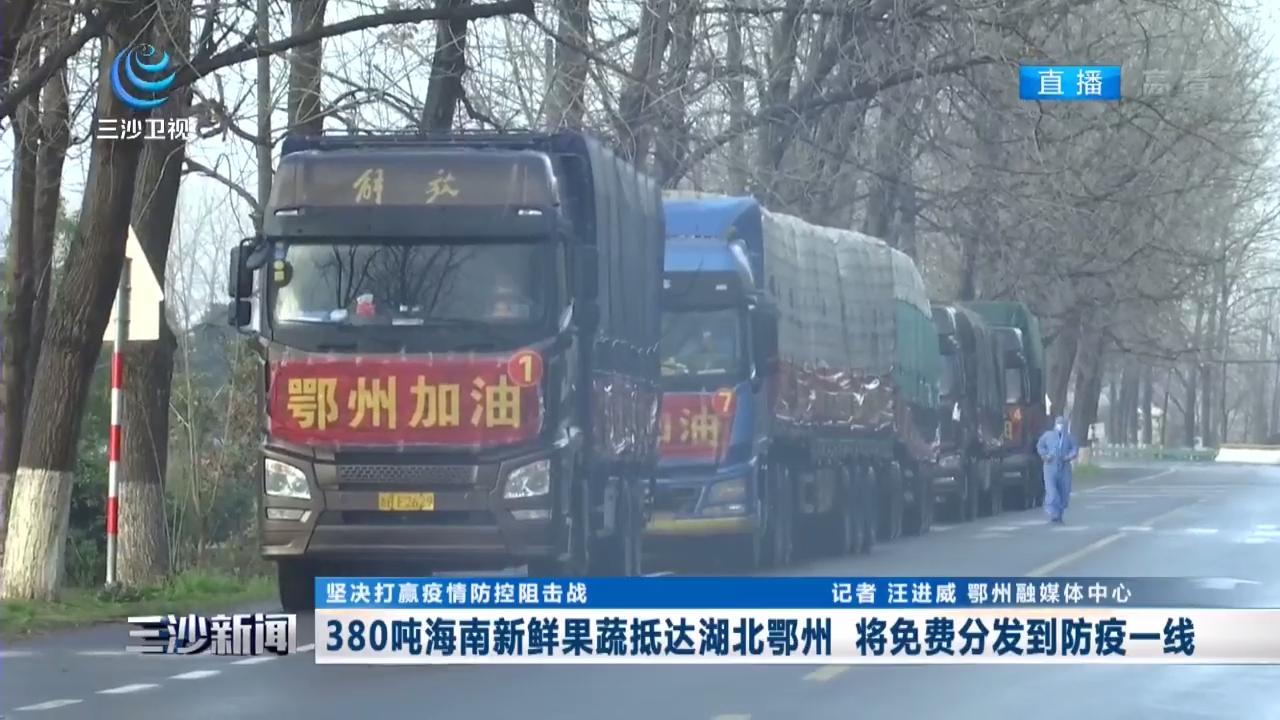 380吨海南新鲜果蔬抵达湖北鄂州 将免费分发到防疫一线