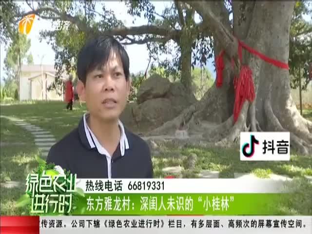 """東方報雅龍村:深閨人未識的""""小桂林"""""""