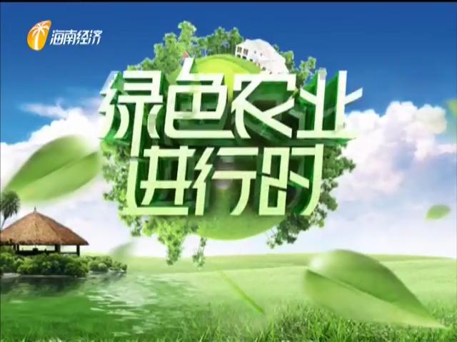 《绿色农业进行时》2020年03月16日