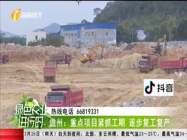 儋州:重点项目紧抓工期 逐步复工复产
