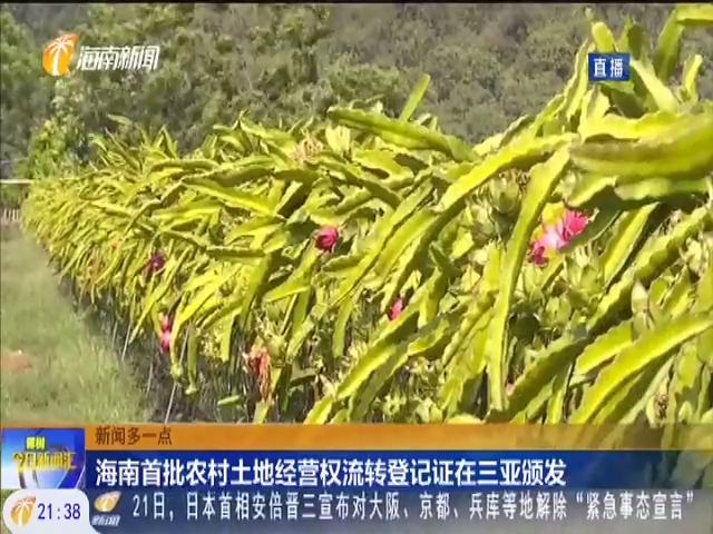 海南首批农村土地经营权流转登记证在三亚颁发