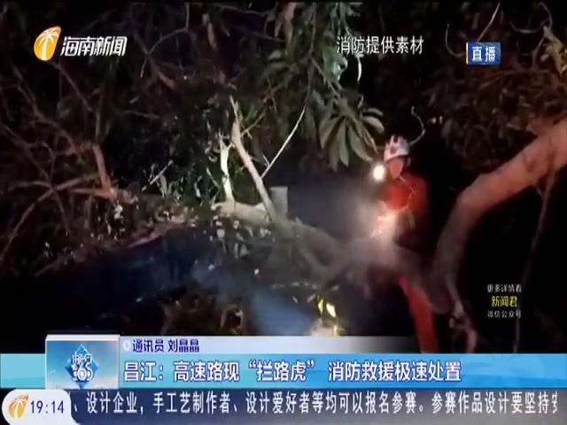"""昌江:高速路现""""拦路虎"""" 消防救援极速处置"""