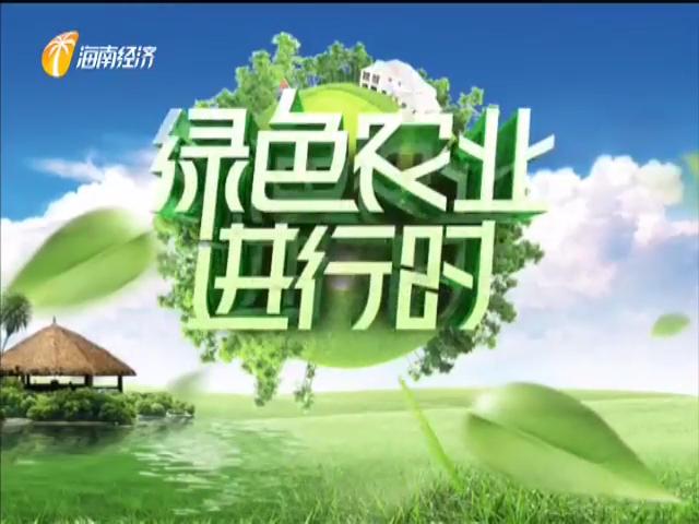 《绿色农业进行时》2020年06月30日