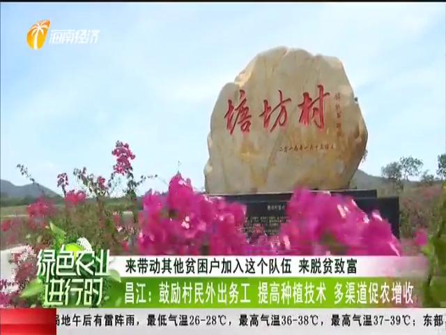 昌江:鼓励村民外出务工 提高种植技术 多渠道促农增收