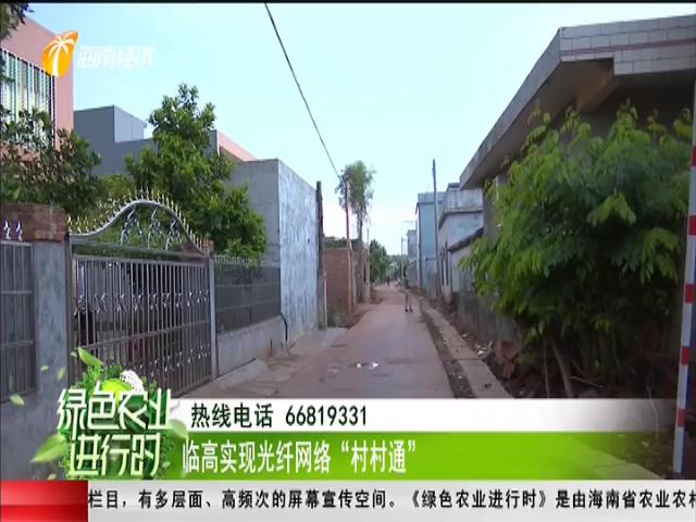 """临高实现光纤网络""""村村通"""""""