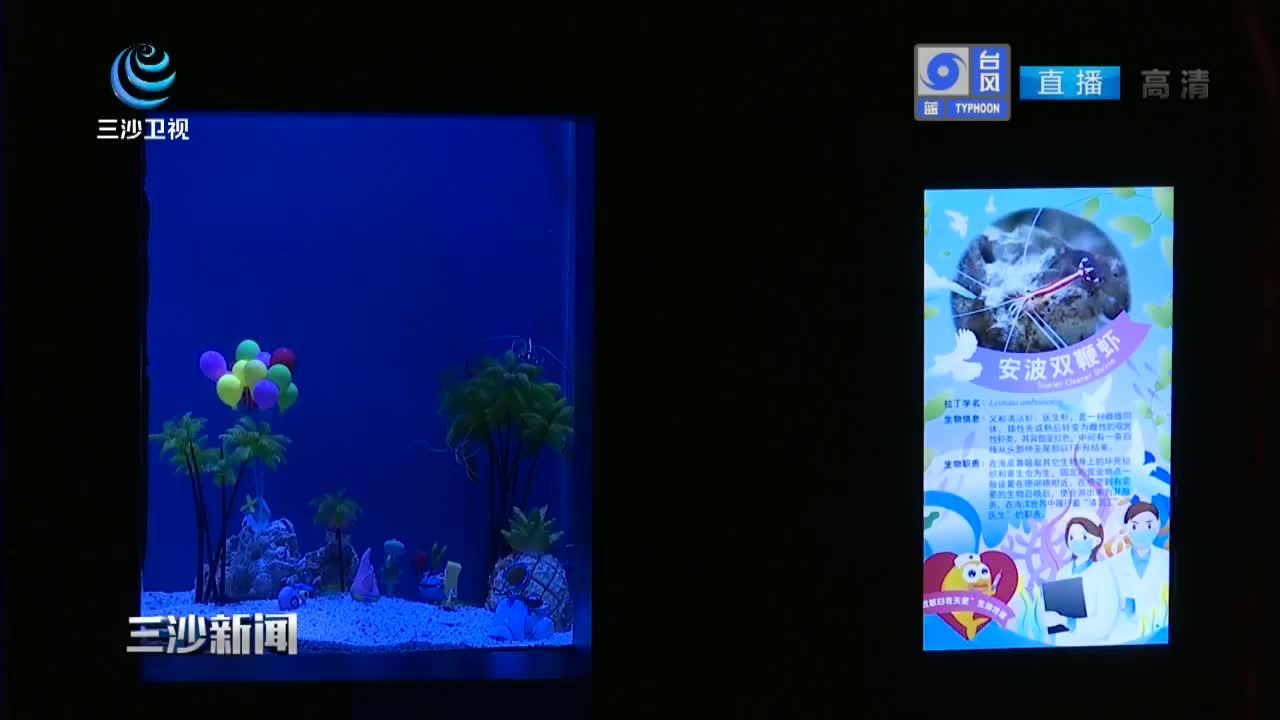 上海:海洋生物特展展出 守护海底世界多样性