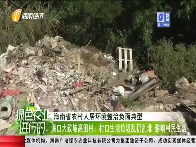 海口大致坡高田村:村口生活垃圾乱扔乱堆 影响村民生活
