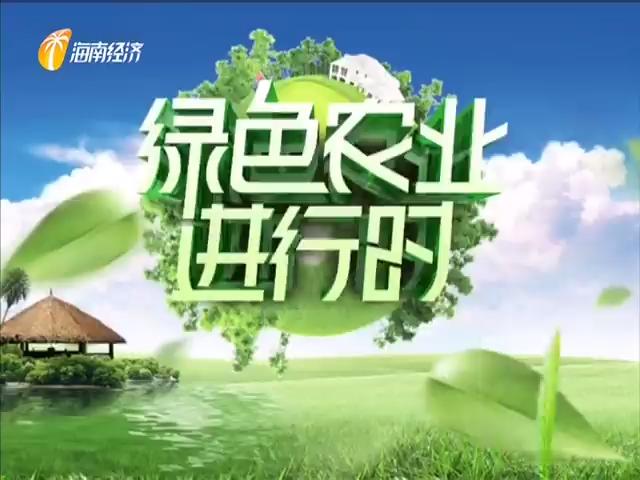 《绿色农业进行时》2020年10月17日