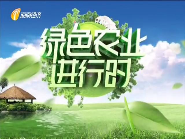 《绿色农业进行时》2020年11月21日