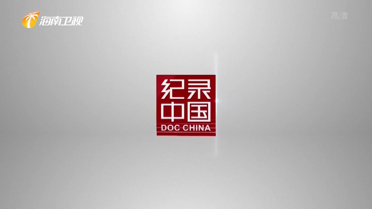 探索古代中国的同行
