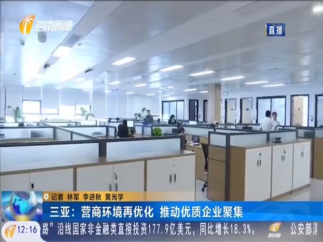 三亚:营商环境再优化 推动优质企业聚焦