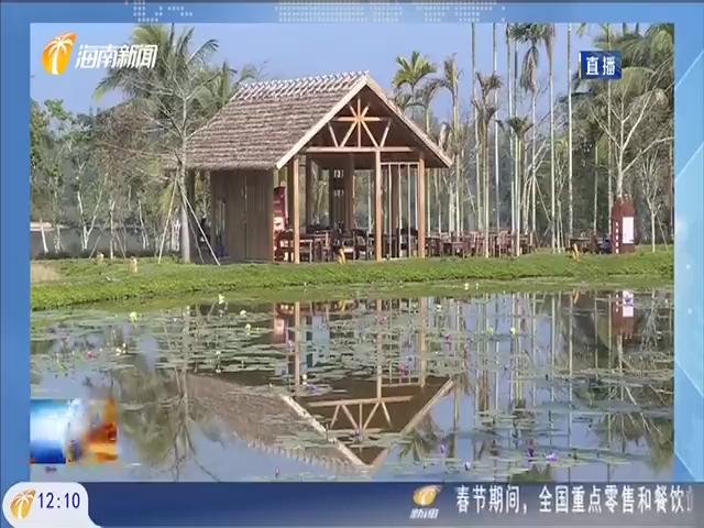 """琼海:""""就地过年""""催热乡村游 美丽留客处处""""留客"""""""